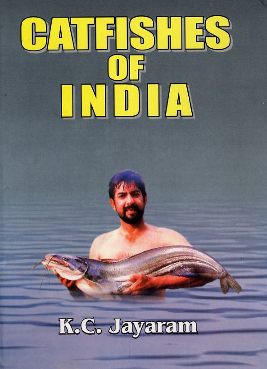 Catfishes of India