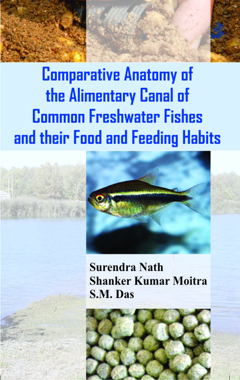 Comparative Anatomy of the Alimentary Canal of Common Freshwater and their Food and Feeding Habits