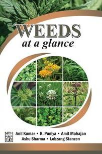 WEEDS at a Glance