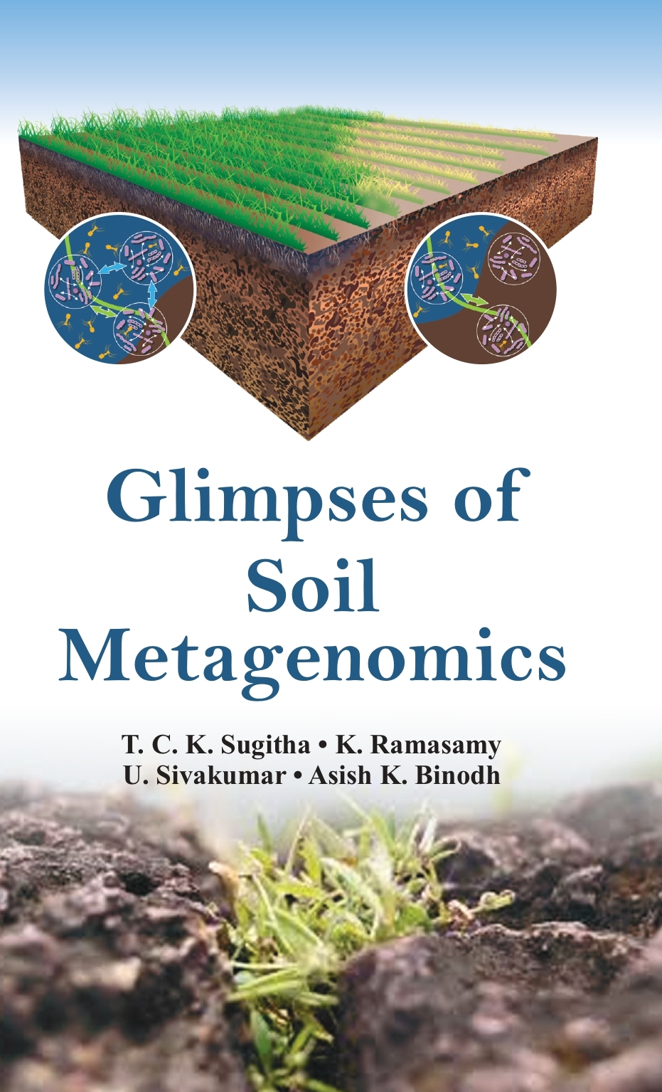 Glimpses of Soil Metagenomics